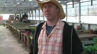 Farm to Family Organic Produce - Richmond VA (Local Produce)
