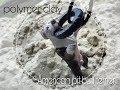 Поделки - Питбуль  / Собака из полимерной глины | Pit bull terrier /Polymer clay/DIY