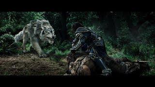 Дуротан освобождает Гарону. Андуин гонится за орком. Андуин спасает Гарону. HD