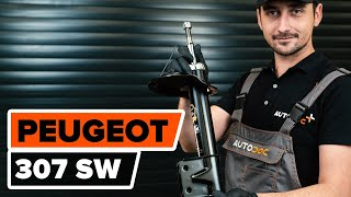 Как се сменят Държач Спирачен Апарат на PEUGEOT 307 SW (3H) - онлайн безплатно видео