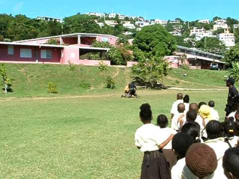 K9 Demonstrations at Joseph Gomez Elementary School