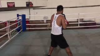 Indian professional boxer | sagar narwat boxer | pad workout