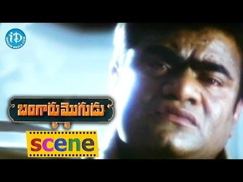 Bangaru Mogudu Movie Scenes - Babu Mohan...