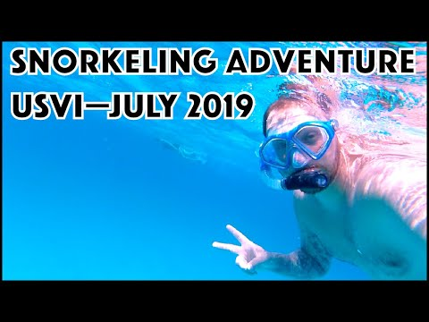 Snorkeling In The US Virgin Islands—July 2019