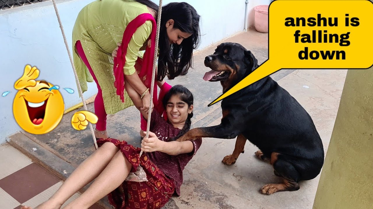Download Anshu is falling down because of my dog||funny dog videos.