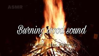 ASMR Burning wood sound 1hour sleep sound - black screen 검은화면 모닥불소리 1시간 잠잘오는 소리