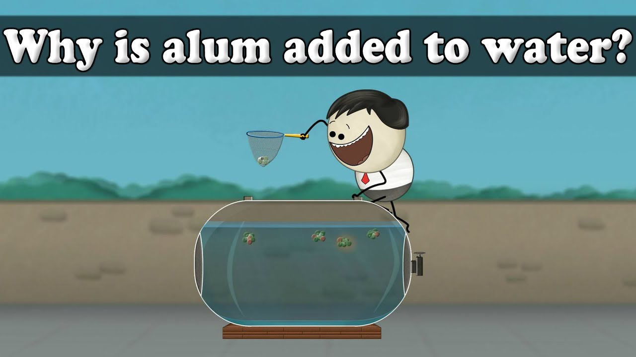 Water Purification - Why is alum added to water? | #aumsum