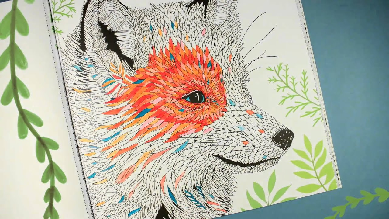 Colouring Books The Menagerie Animal Portraits To Colour