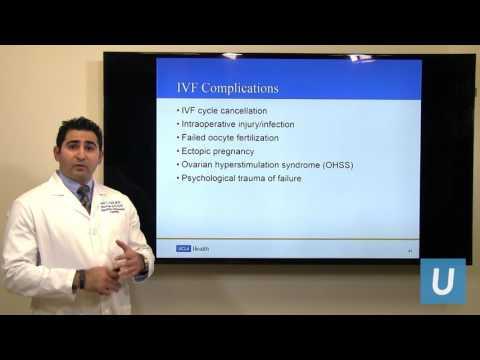 Embryo Transfer, Cryopreservation & IVF Results - Zain Al-Safi, MD | UCLA Health Fertility Clinic