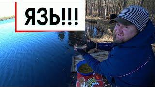 Фидерная рыбалка в заповедном озере 2 ой день Язь