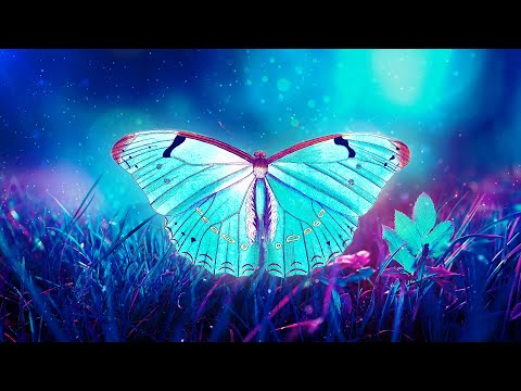 🦋THE BUTTERFLY EFFECT II ⁂ Raise Positive Energy Vibrations ⁂ 432Hz Music
