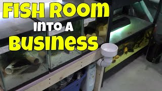 How one Hobbyist turned his Fish Room into a Business