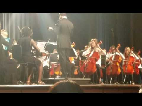 Alice Drive Middle School Orchestra beginner group