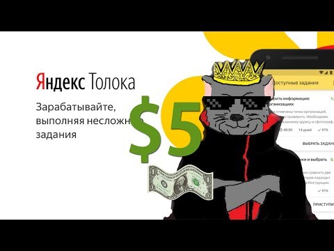 Яндекс Толока - (25.11.19) Day 5  5$