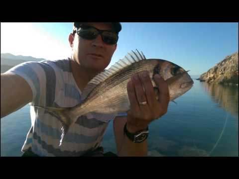summer fishing adriatic sea