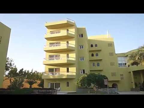 19/10/2017- утренняя прогулка  по территории отеля Palm Beach Resort 4* / Хургада, Египет