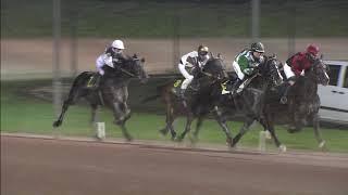 Vidéo de la course PMU TROPHEE DES CHAMPIONS
