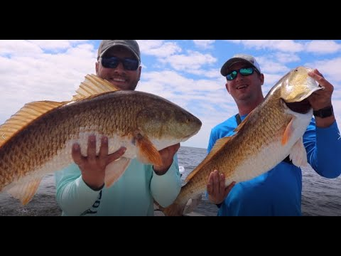 Cocodrie, Louisiana Fishing. Speckled Trout, Giant Bull Redfish, And More!