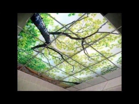 Подвесные потолки для кухни ( megainterior ).