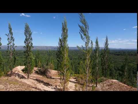 P1069672   Uitkijkpunt Kakamega Forest NR