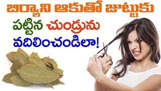 AMAZING Benefits of Bay Leaf for Dandruff   How to Get Rid of Dandruff   VTube Telugu