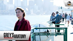 Grey's Anatomy - Season 14 - ABC