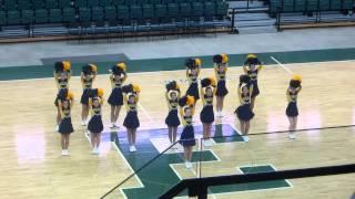 Crestwood Varsity Pom - Mid American Pom State Championship 2013