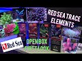 RED SEA CORAL COLORS (FIRST LOOK/OPEN BOX)
