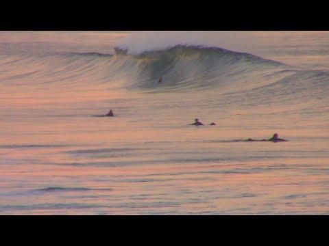 Surfing St Clair Beach Dunedin At Sunset
