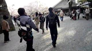 SHONAN-HIBEES 10th Ani AIDU FUKUSHIMA 03
