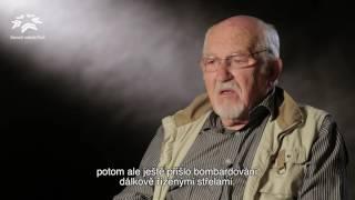 Slavnosti svobody Plzeň (Hubert Rauw - CZ/FR)