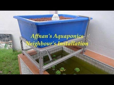 Affnan's Aquaponics - Neighbour's Aquaponics Installation