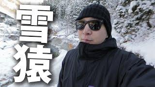 今日我地坐巴士,由東京去長野尋找雪猿~ 回程順手去埋日本戰國時代,武...