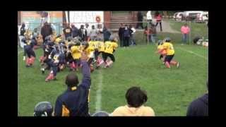 Kirk Park Mighty Mites Gold vs Blue 2012