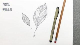 기본 펜일러스트 _ 잎사귀 그리기 pen illust