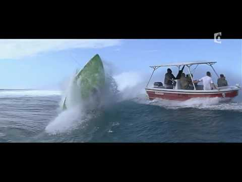 Surf Teahupoo, Inside the Monster - Documentaire France O