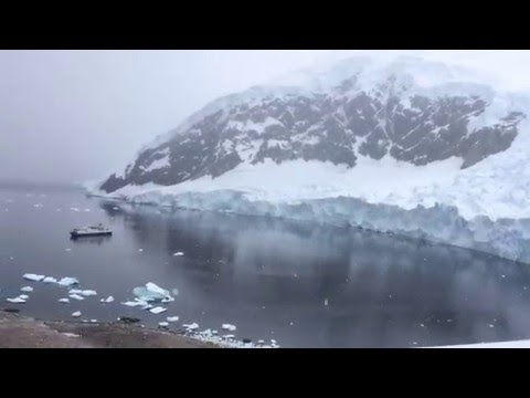 Neko Harbor- Looking down Antarctica 從上面俯視南極海洋