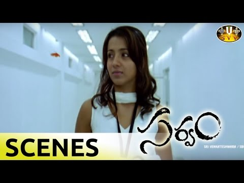 Sarvam Movie Trisha Feeling Arya`s Love Scene || Aarya, Trisha