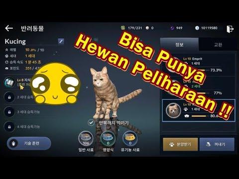 Penjelasan Fitur Pet di Black Desert Mobile Indonesia