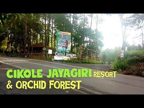 Cikole Jayagiri Resort Orchid Forest Cikole Youtube