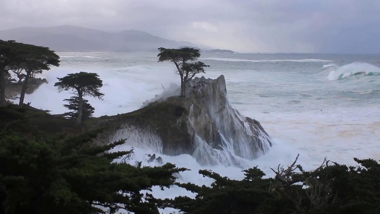 Pebble Beach Lone Cypress Takes Direct