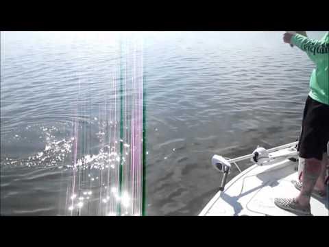 Monster Bull Redfish -Tug of War Charters - 4-18-2015 - Mosquito Lagoon