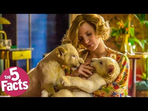 Thumbnail: The Zookeeper's Wife (2017) - Top 5 Facts!