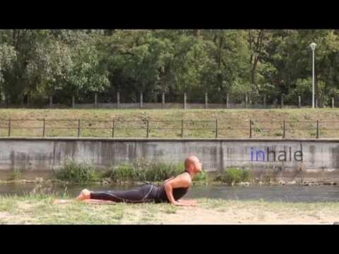 darius yoga  sun salutation variation b  preview version