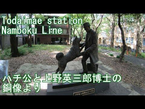 南北線 東大前駅に潜ってみた Todaimae station Namboku Line