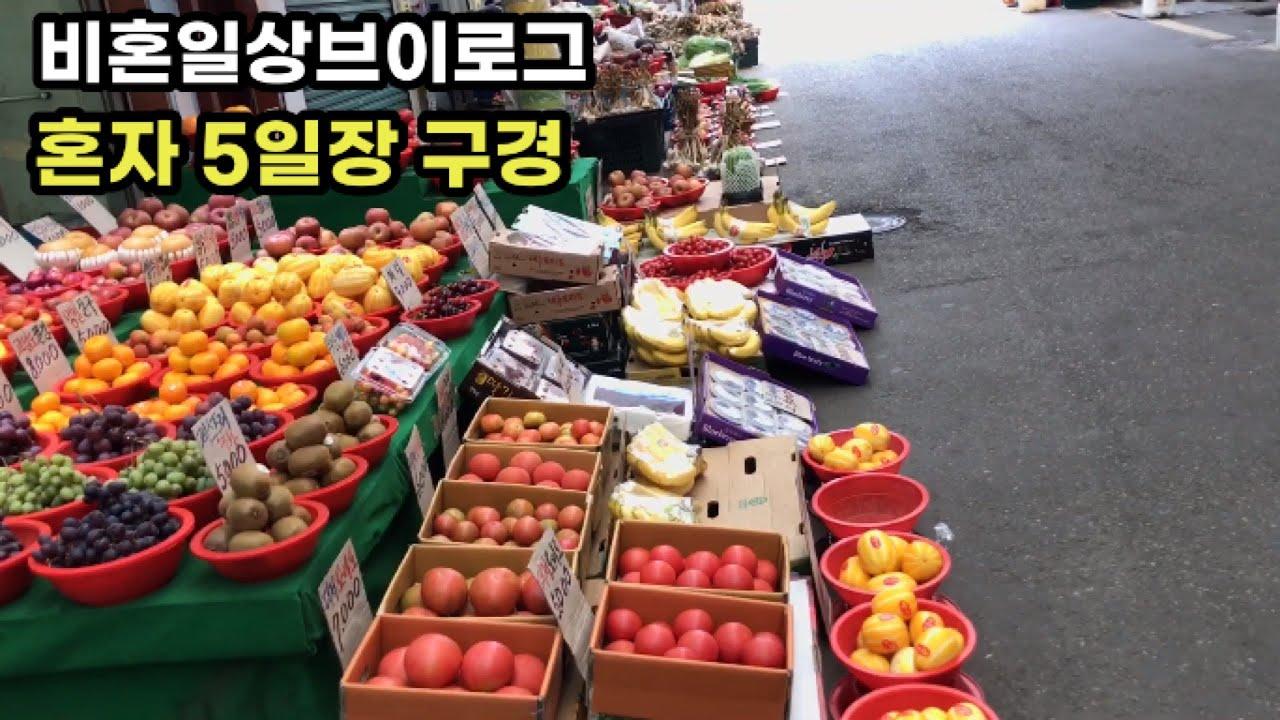 독신일상브이로그 비혼 미혼 베란다텃밭만들기 상추 깻잎 고추 흙 작물 물주기