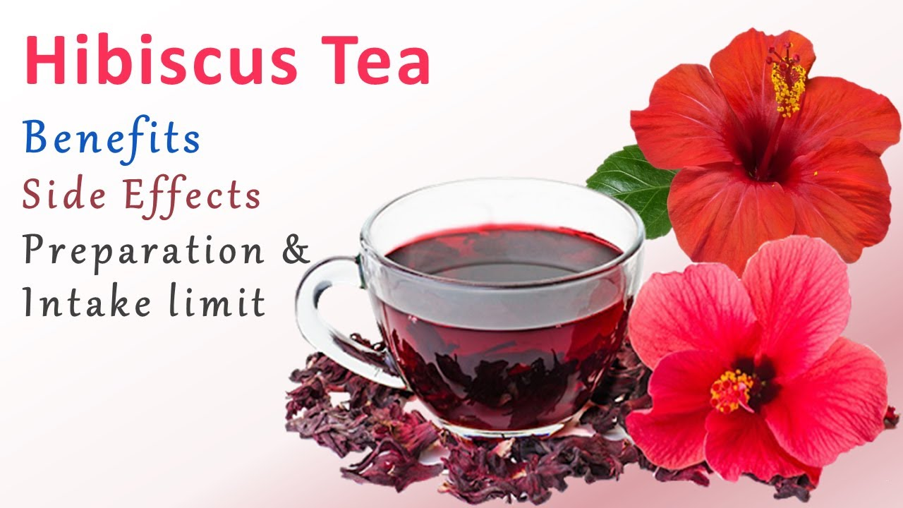 Download Hibiscus Tea Benefits & Side Effects ||  Health Benefits of Hibiscus Tea