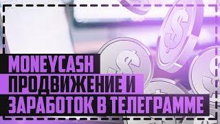 MONEY-CASH -  БОТ ДЛЯ ЗАРАБОТКА В ТЕЛЕГРАММЕ/ ПРОДВИЖЕНИЕ ТЕЛЕГРАММ КАНАЛА