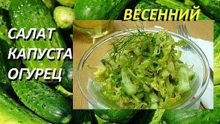СВЕЖАЯ КАПУСТА С ОГУРЦОМ. ВКУСНЫЙ ВЕГЕТАРИАНСКИЙ РЕЦЕПТ #salad #салат