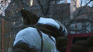 Fallout 4 - Swan